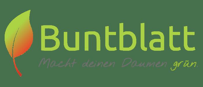 Buntblatt: Pflanzen für Zimmer, Balkon und Terrasse
