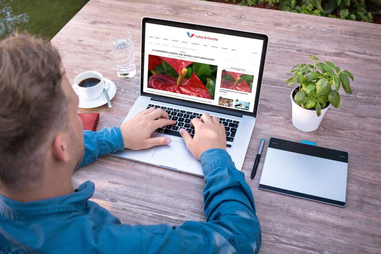 Zimmerpflanzen | Produktiver arbeiten mit Zimmerpflanzen – so geht es